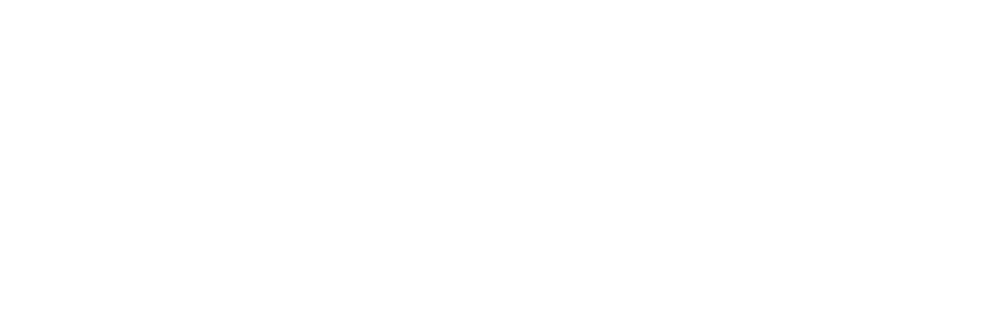 Wandering Explorer Travel
